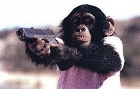 monkey gun